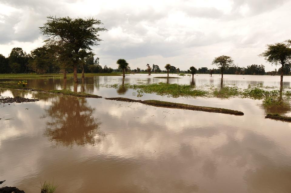 flood insu